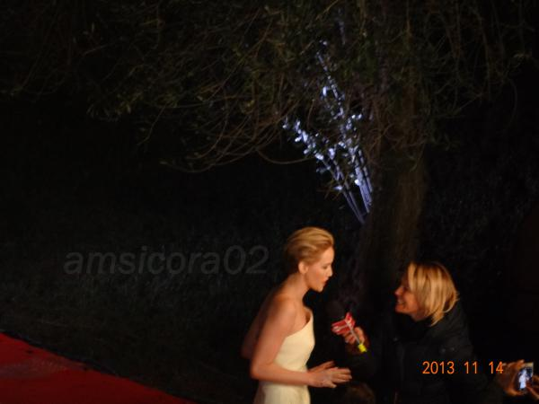 ROMA-FILM-FESTIVAL-2013.jpg